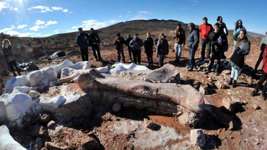 argentina_fossils-titanosaur-femur