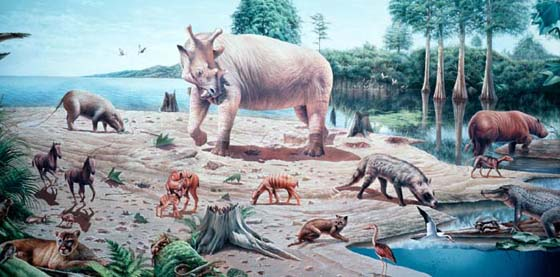 Neozoic-the-Era-of-the-Mammals-4.jpg-1