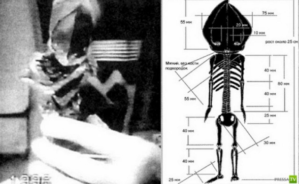 Uralian-Alien-(1).png
