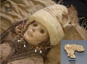 Egy 3600 éves múmián találták meg a világ legrégebbi sajtját