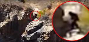 Friss videó került elő az ausztrál bigfoot-ról!