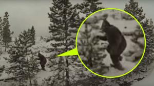 Drónnal kapták rajta a rejtélyes Bigfoot-ot!