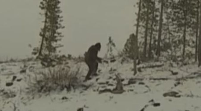 bigfoot colorado