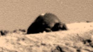 A NASA hallgat róla: kunyhót fotóztak a Marson!