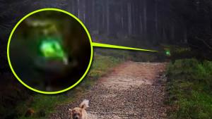 Hátborzongató lidércet fotózott a kiránduló egy angliai erdőben