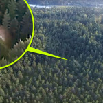 Száguldó ufót videózott egy drónkamera az orosz tajga felett