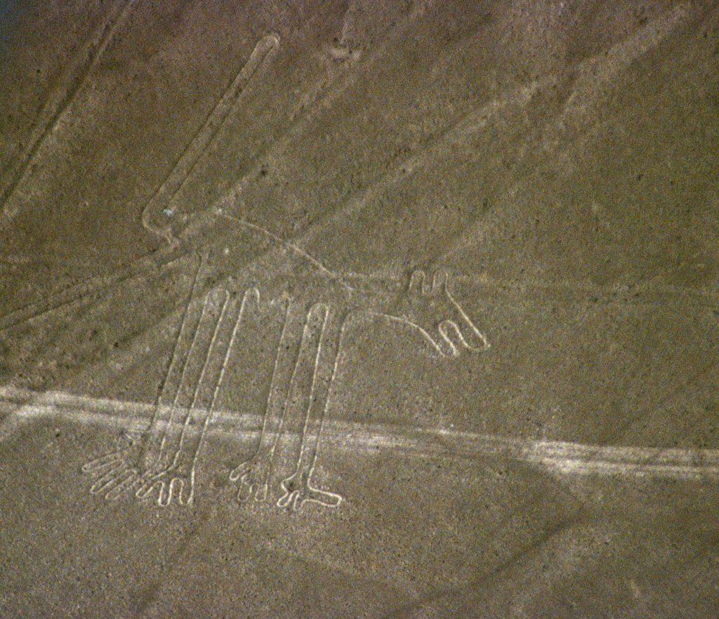1280px-Nazca-lineas-perro-c01