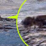 Döglött földönkívülit fotózott a Curiosity rover a Marson