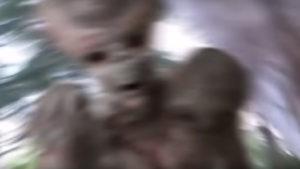 Földönkívüli támadt egy japán videósra… a kamera mindent vett!