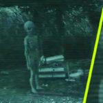 Földönkívüli lényt vett fel egy farm biztonsági kamerája
