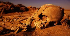 Tudósok szerint, hamarosan kihal az emberiség