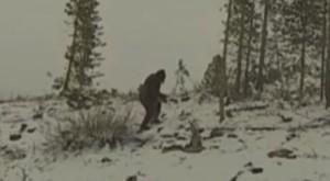 Bigfoot sétált be a hegyi bringások videójába