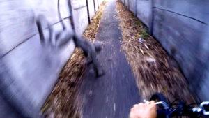 Groteszk lény ugrott egy magyar biciklis elé – a fejkamera mindent vett!