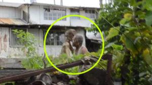 Ezt látni kell! Földönkívülivel pofozkodott egy 80 éves hawaii-i nyugdíjas!