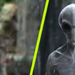 Földönkívüli lény tévedt a kamera elé a temetőben