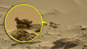 Újabb gyanús fotó a NASA archívumából: Madár a Marson!