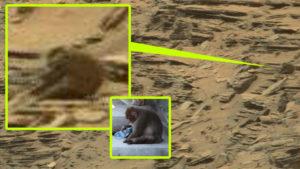 Mit keres egy majom a Marson készült fotón?